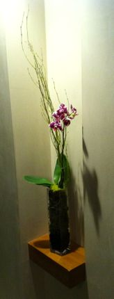 Inspiring Moment: Orchids