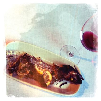 Inspiring Moment: Fish Remains with Wine