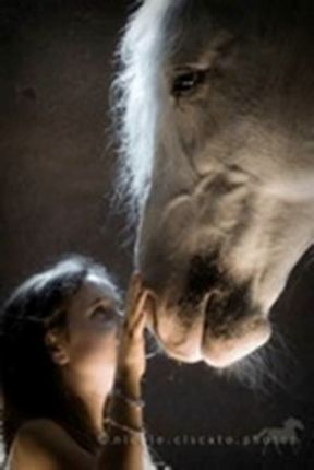 Young girl petting a horse five more minutes with website link